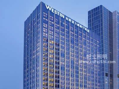 安徽合肥富力威斯汀酒店非标工程灯